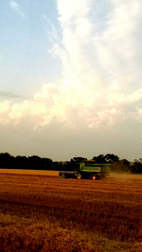 harvest with clouds 2015